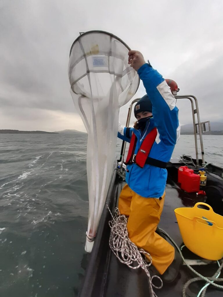 Image shows Hannah Brownlow lifting up the plankton net from the water. She is wearing a face mask, fishermans overalls, a blue rain jacket and red lifejacket.